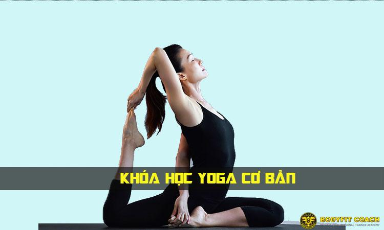 Đào Tạo HLV Yoga Căn Bản